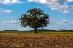 福建土地增值税计算方法(土地增值税税率是多少)